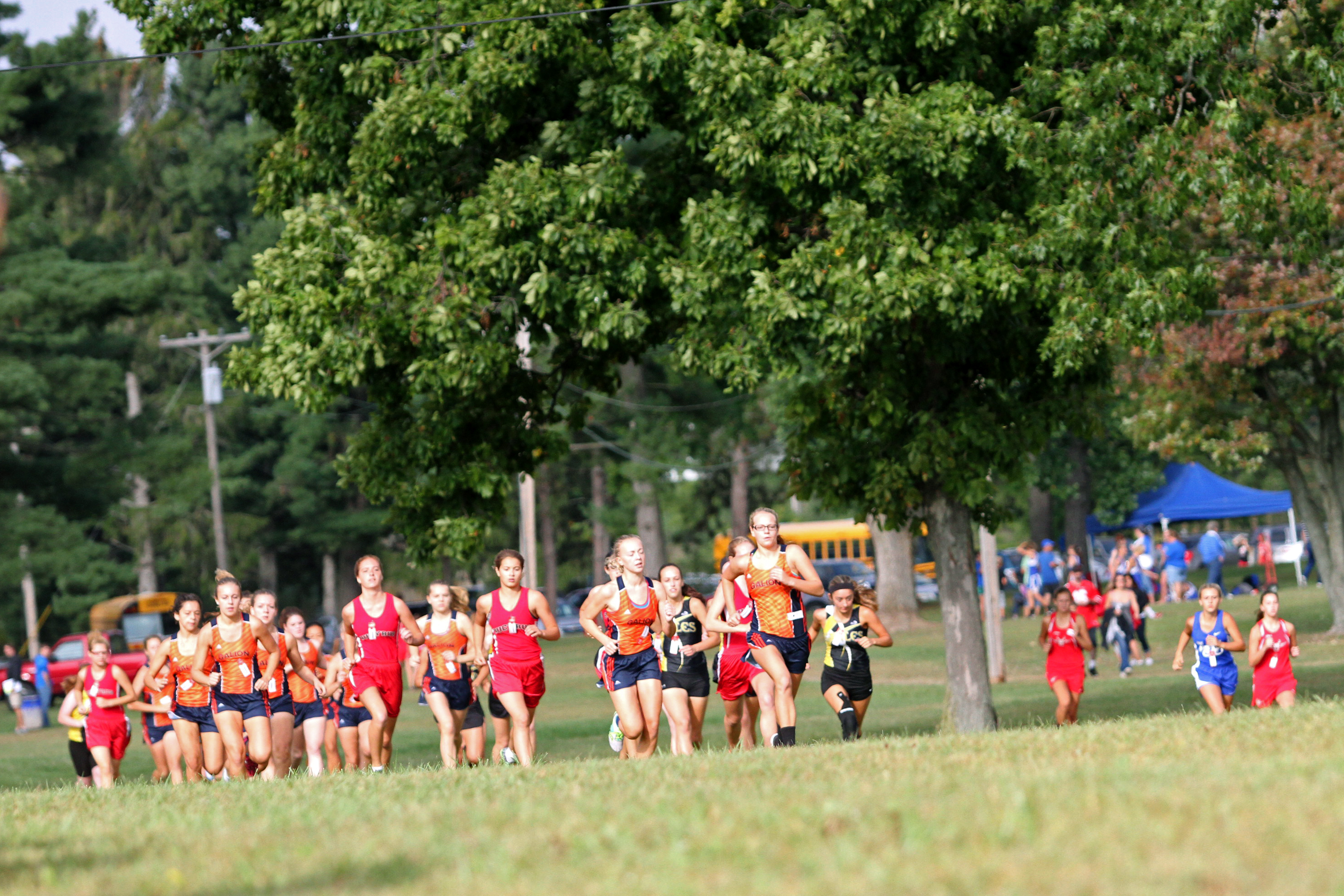 2016 County Cross Country Meet 22 Crawford County